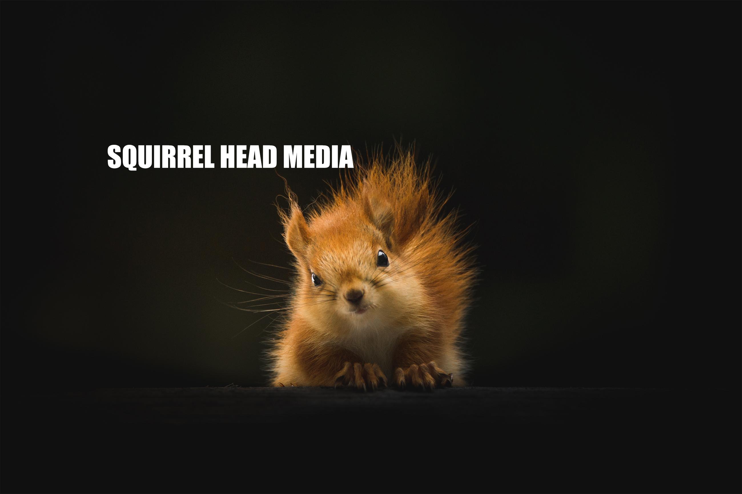 Squirrel Head Media